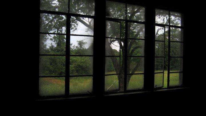 Domy wkomponowane w krajobraz